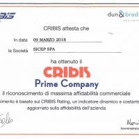 ATTESTATO CRIBIS_1029